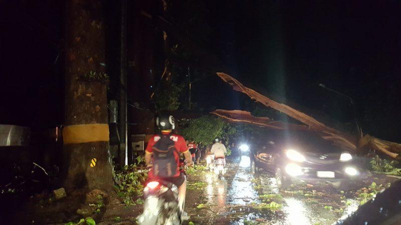 ภาพความเสียหายถนนสายต้นยาง